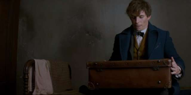 Fantastic Beasts and Where to Find Them 11