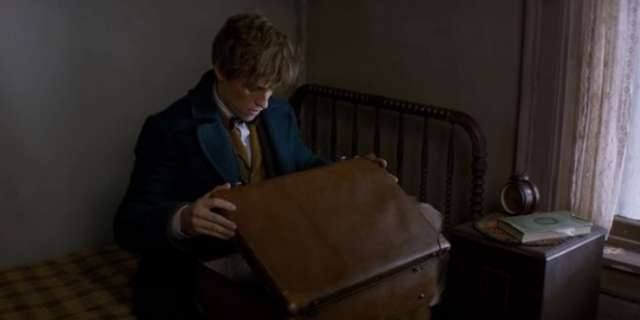 Fantastic Beasts and Where to Find Them 13
