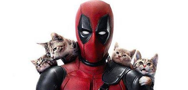 deadpoolcats