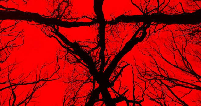 Blair Witch (2016) Reviews