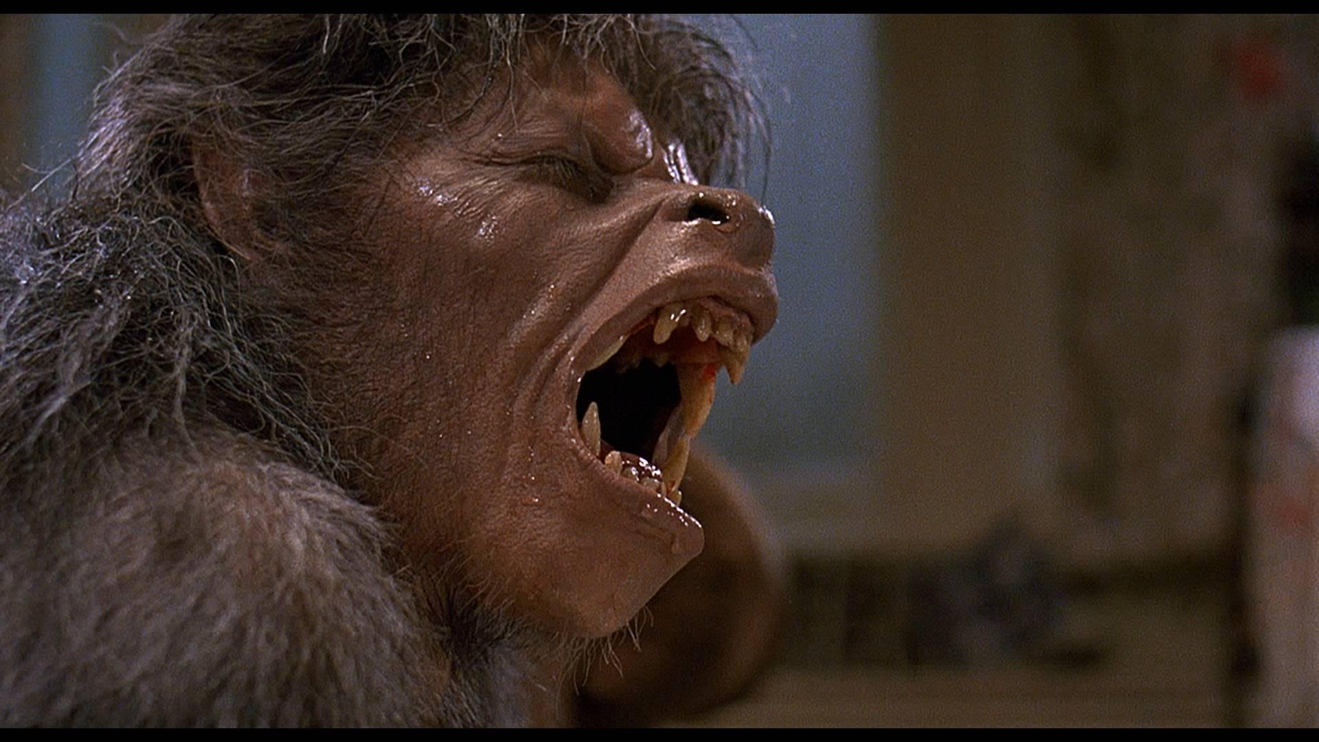 An-American-Werewolf-in-London-Transform