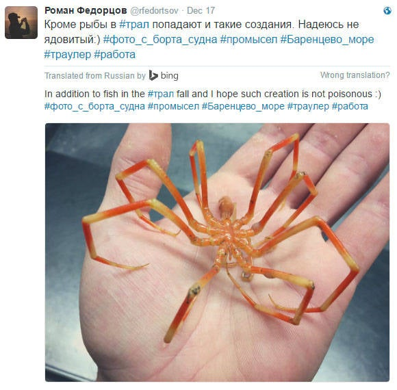russian deep see fisherman creature 3