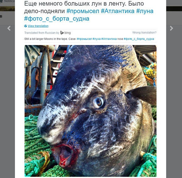 russian deep see fisherman creature 6