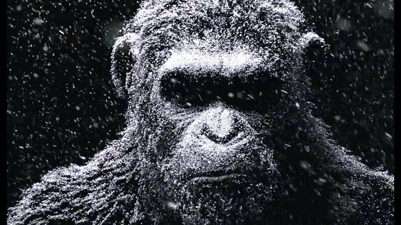 War for the Planet of the  Apes International Trailer