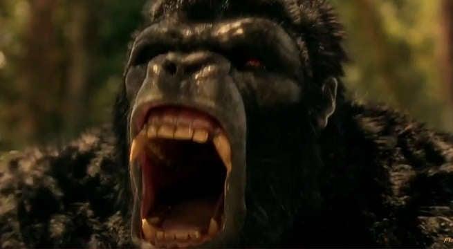 attack-on-gorilla-citi