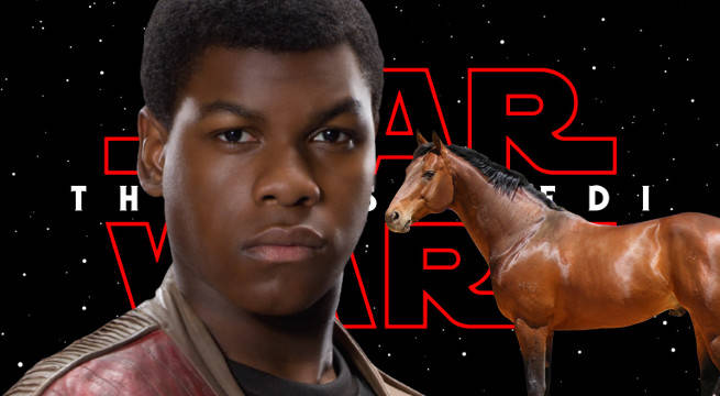 star wars the last jedi finn space horse new species name