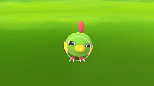pokemon tiny