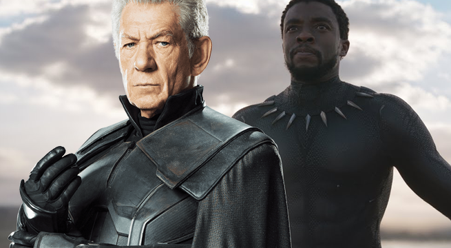 black panther magneto