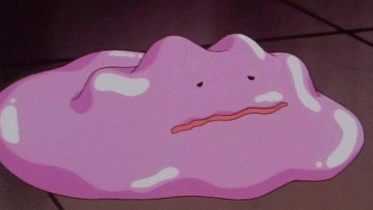 Ditto Fangen Pokemon Go