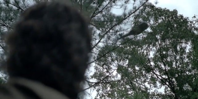 Image result for rick sees a helicopter
