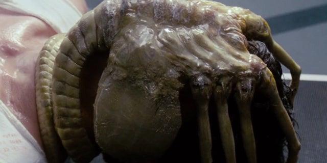 alien movie facehugger xenomorph