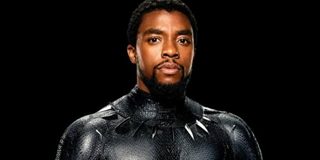 Black Panther Is Coming to Disney+ Next Month