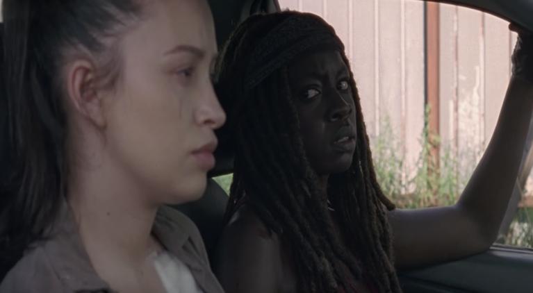 The Walking Dead Michonne Rosita