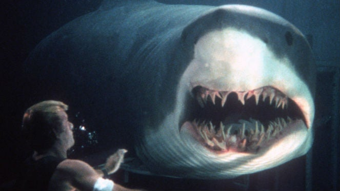 deep blue sea shark thomas jane sequel