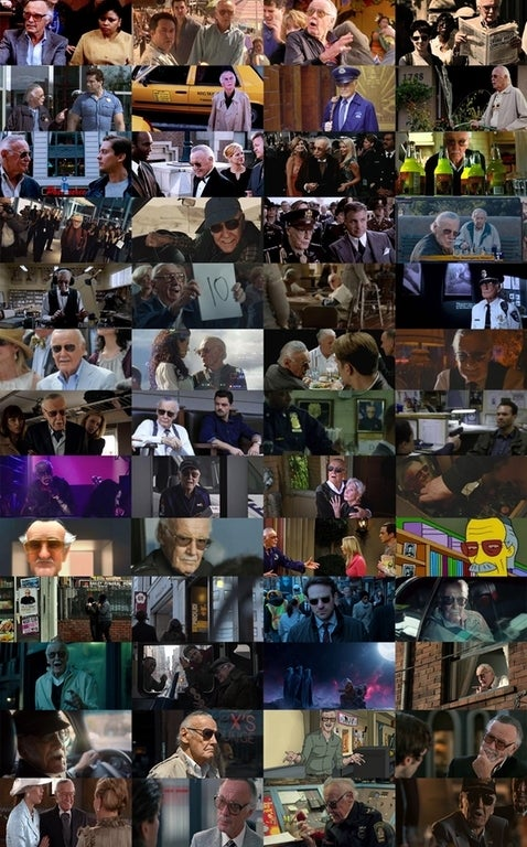 Every Stan Lee Cameo in One Photo