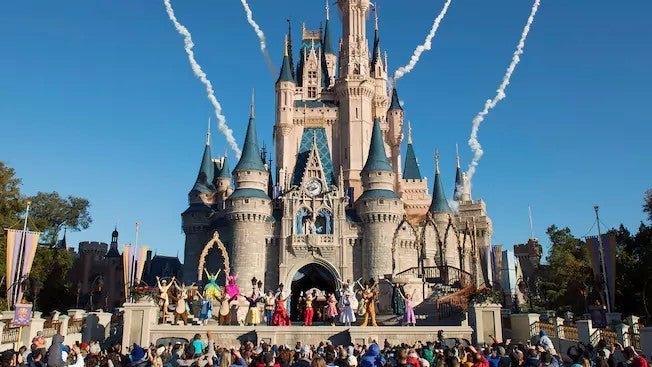 walt disney world resort magic kingdom castle
