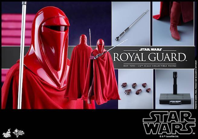 Hot Toys - SW - Royal Guard collectible figure_PR19