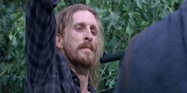 The Walking Dead Dwight 811