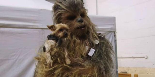 solo a star wars story wookiee chewbacca roar