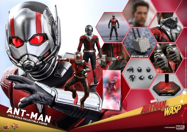 Hot Toys - Ant-Man and The Wasp - Ant-Man Collectible Figure_PR23