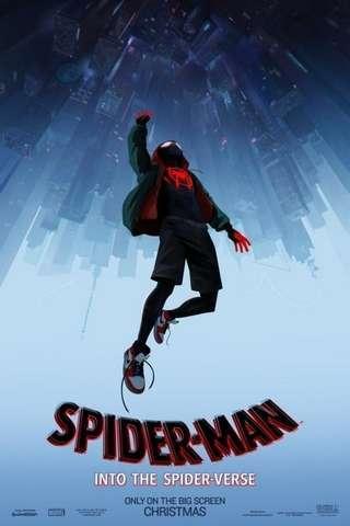 spider-man_spider-verse_defaut2