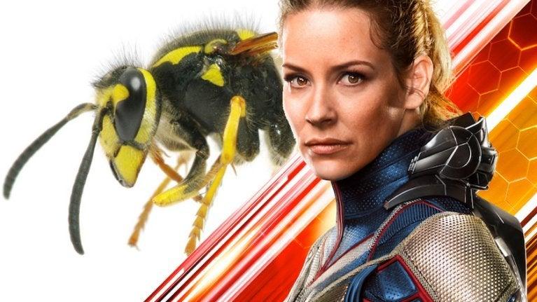 Evangeline Lilly Wasp