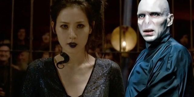 New 'Fantastic Beasts' Character Has Major Ties to 'Harry Potter's Voldemort