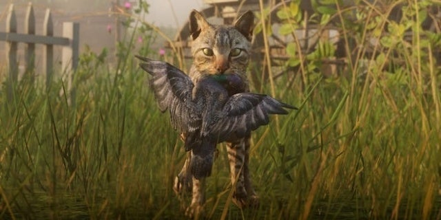 'Red Dead Redemption 2' Players Are Petitioning to Pet Cats