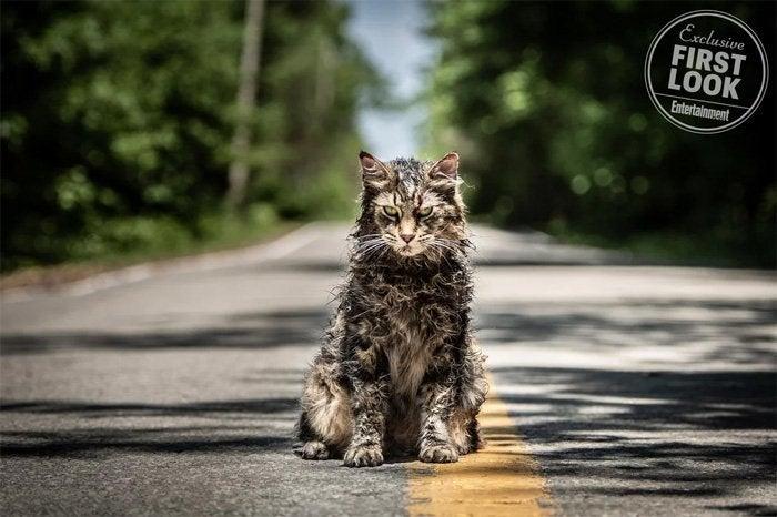 pet sematary remake cat churchill