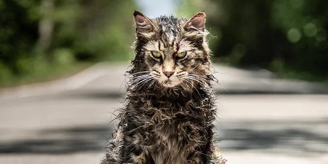 pet sematary remake cat churchill header