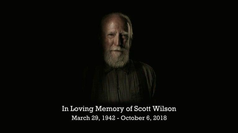 Image result for scott wilson talking dead tribute