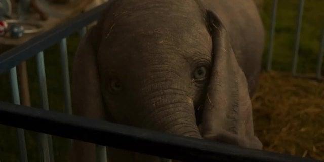 'Dumbo' - Official Trailer- Disney screen capture