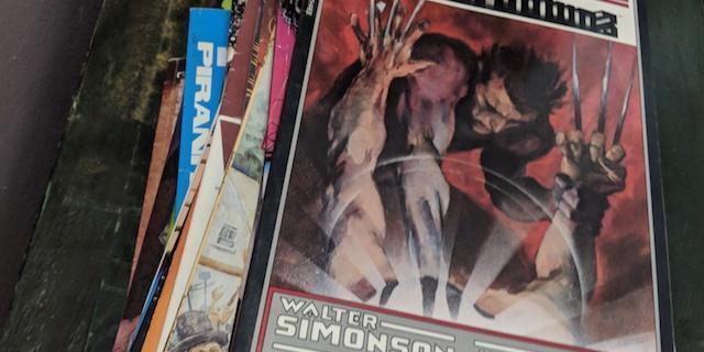 Grace-Simonsons-havok-wolverine