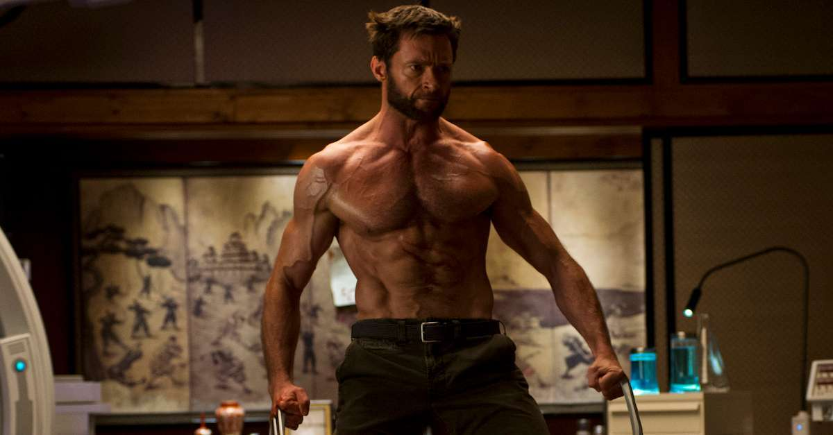28-the-wolverine_a89626