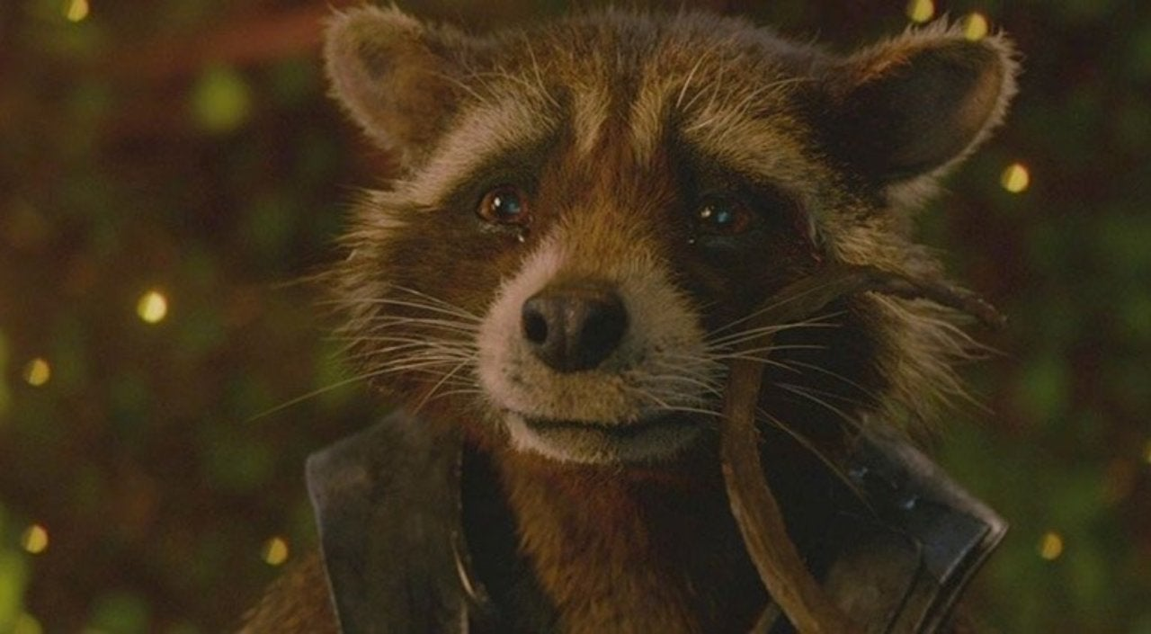 Rocket Is the Most Deserving to Get a Guardians of the Galaxy Solo Movie