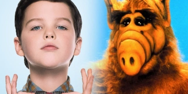 alf young sheldon cameo
