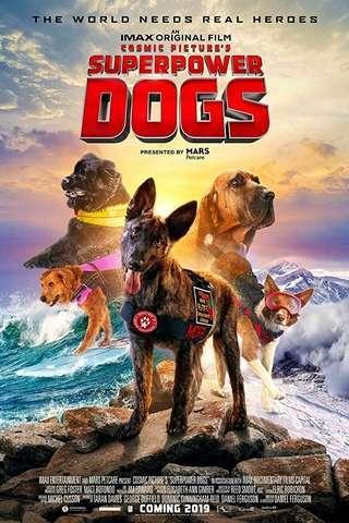 superpower_dogs_default