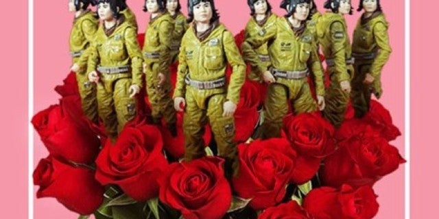 one-dozen-rose-ticos
