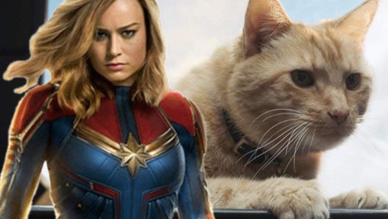 'Captain Marvel': What's a Flerken?