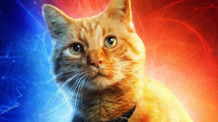 captain marvel goose character poster
