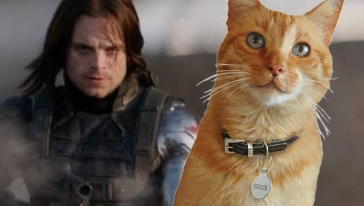 'Captain Marvel' Editor Reveals Goose's Tie To 'The Winter Soldier'