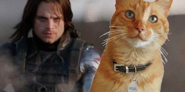 captain marvel goose winter soldier