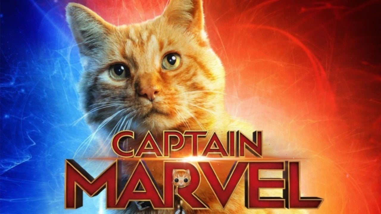 Captain Marvel Directors Reveal Why Goose Is Played By A Male Cat