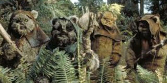 Star Wars Fan Video Shows Rey Become the Ewoks' Worst Nightmare