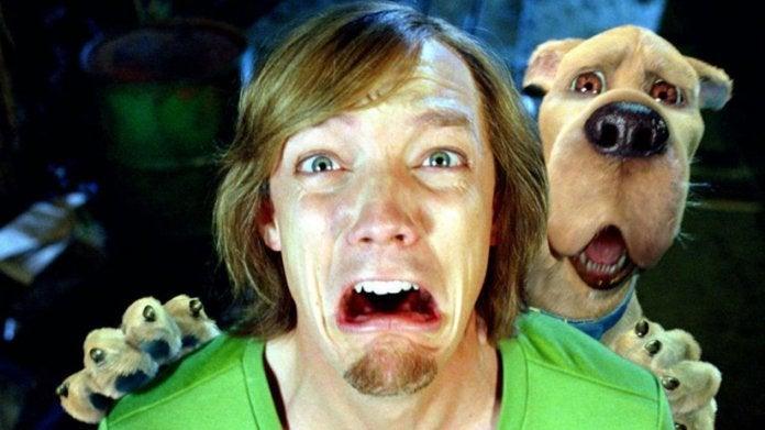 Scooby Doo Shaggy Matthew Lillard