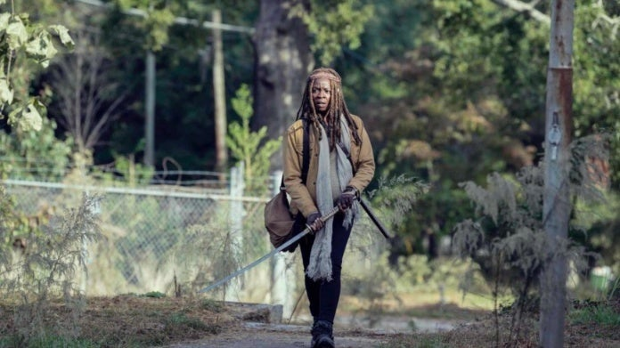 The Walking Dead Michonne 914