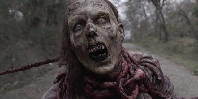 The Fear Walking Dead Stream