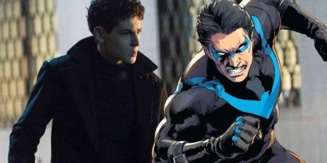 Gotham Nightwing
