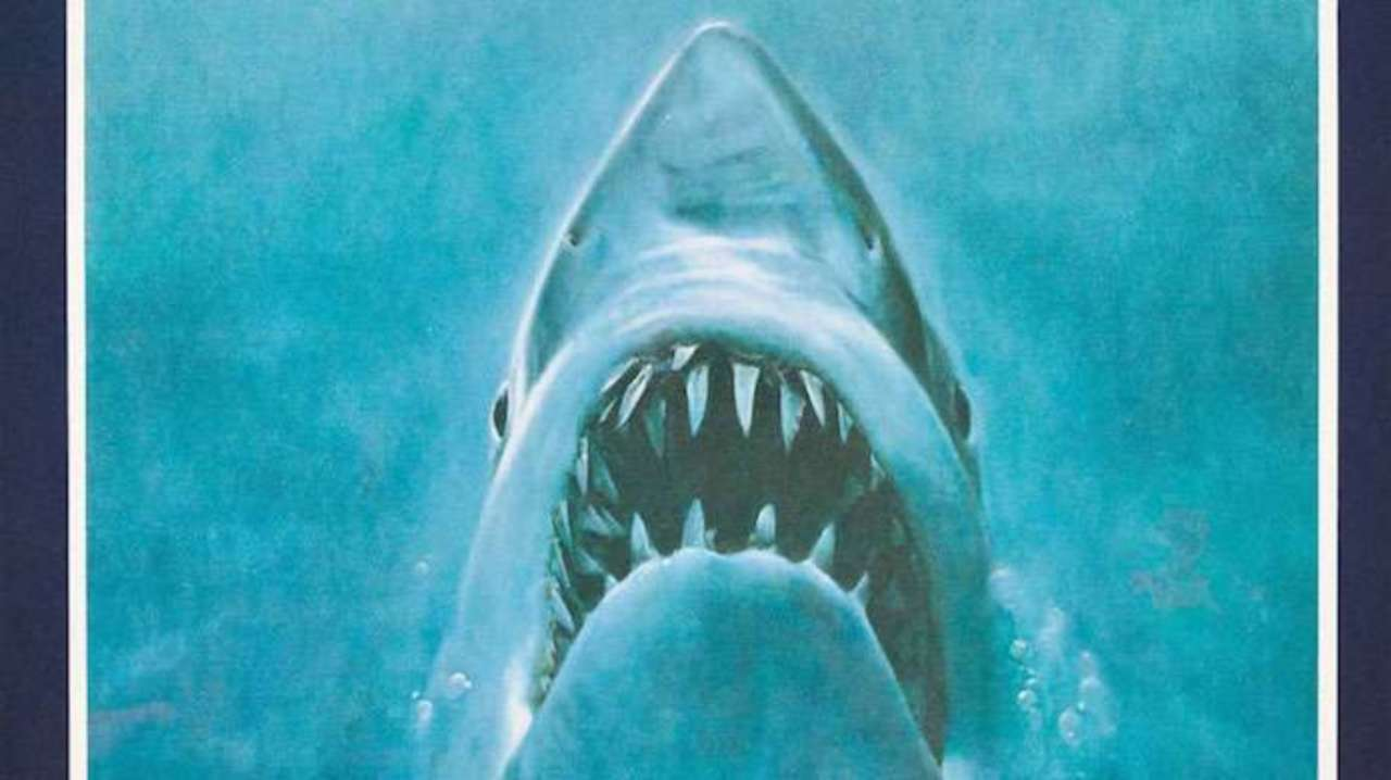 Diver Snaps Great White Shark Photo That Nearly Replicates Jaws Poster