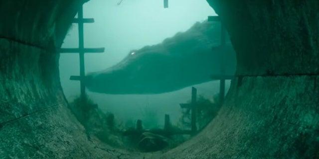 Director Alexandre Aja Talks Developing His Survival Horror Movie Crawl